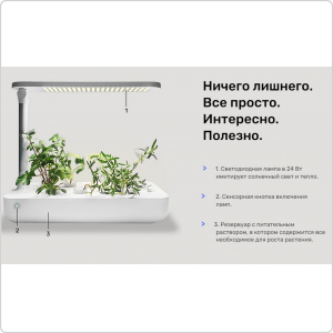 Гидропонная система Vegebox T-Box